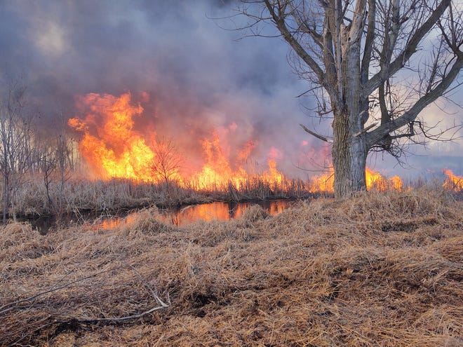 Constantine Fire Department conducted a controlled burn Saturday near Haybridge Road. Smoke from the blaze was visible from miles away. Some residents were concerned, prompting safety officials to assure the community all was well.