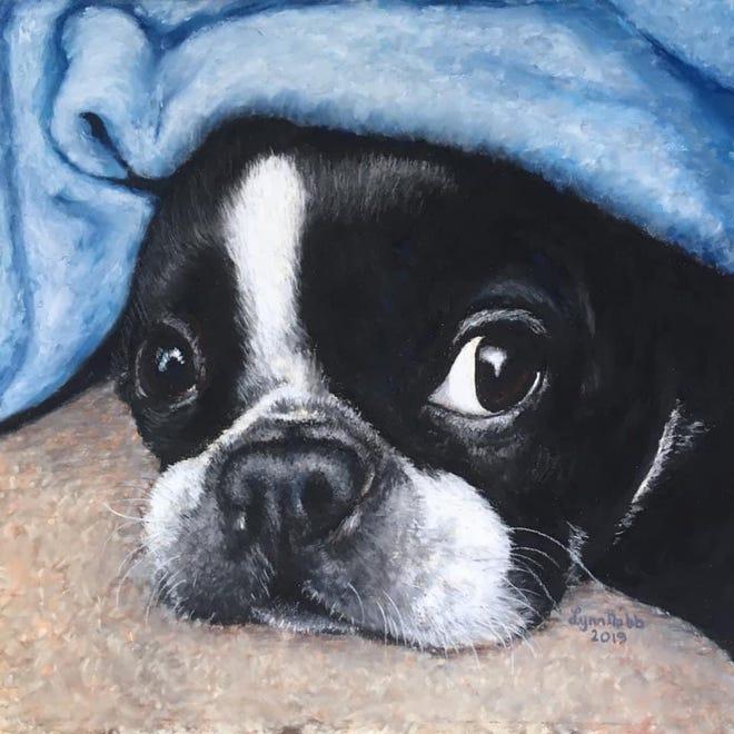 Pet portrait in pastel.