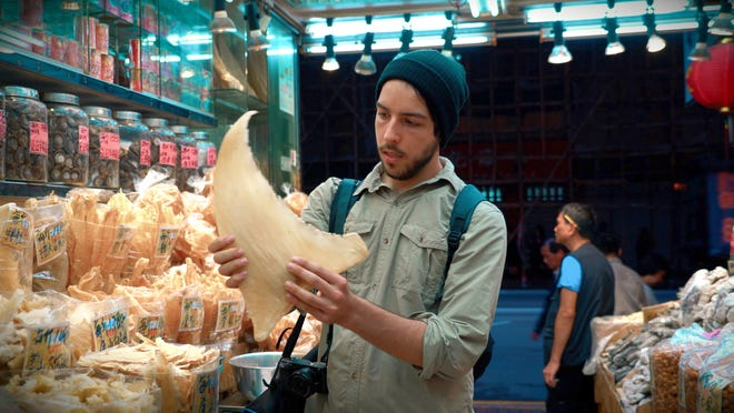 """Filmmaker Ali Tabrizi checks out a shark fin in an Asian market in the Netflix documentary """"Seaspiracy."""" Shark finning, illegal in some U.S. states, is the practice of slicing off a shark's fin and throwing the wounded shark back in the water. """"Seaspiracy"""" documents the environmental impacts of the fishing industry."""