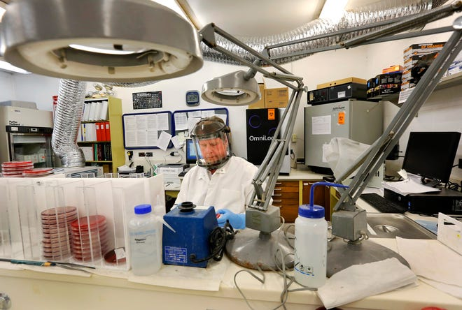 A public health lab employee is shown at his work station in the old lab located in Oklahoma City in this 2014 file photo. [The Oklahoman archives]
