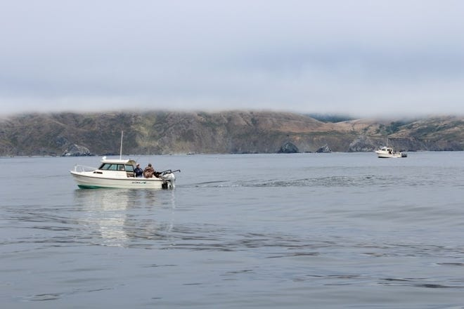Boats troll for salmon off the Sonoma County Coast north of Bodega Bay.