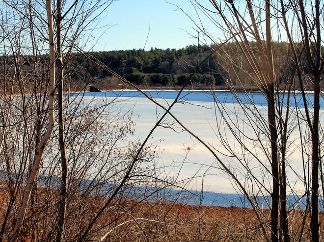 Branches form an 'X,' over a view of the Thomas Basin, in West Boylston, as ice slowly begins melting.