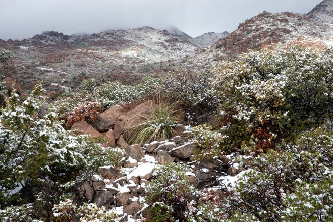 Snow in the high desert on March 16, 2021, east of Superior, Ariz.