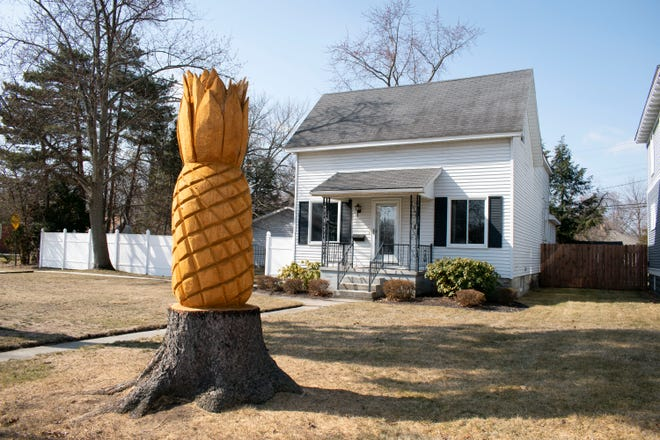 A chainsaw artist turned a broken red pine tree into a giant pineapple on the front lawn of Don Cole's home in Port Huron, Mich.