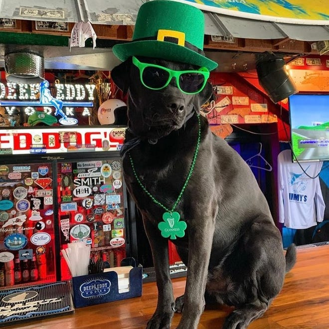 Kruiser is celebrating Saint Patrick's Day and the fact that Jimmy's in Wrightsville Beach advanced in the Barstool Sport Best Bar competition.