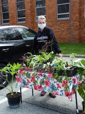Jonni Ford, owner of Zen Hollow Greenery, shows off her assortment of houseplants during the 2020 Norwich Area Seed and Plant Swap.