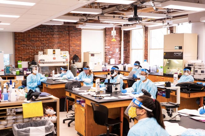The Boston Foundation announced that Middlesex Community College is one of four Massachusetts community colleges to share $426,656 in grants to invest in expanding and strengthening Middlesex's internship offerings for students in STEM fields.