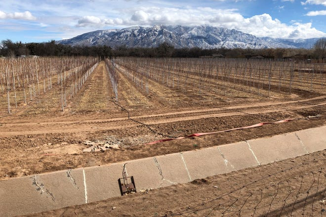 This Feb. 17, 2021 file photo shows an empty irrigation canal at a tree farm in Corrales, N.M., with the Sandia Mountains in the background, as much of the West is mired in drought, with New Mexico, Arizona, Nevada and Utah being among the hardest hit.