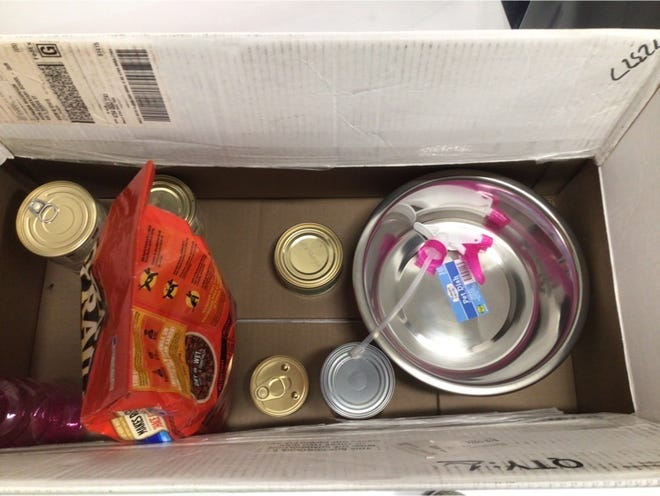 Donations for the Humane Society of Fulton County are being collected by Avon Grade School until March 31. Whichever class collects the most donations will receive an ice cream party. As of Friday, the first grade was in the lead with the fifth grade in second place.