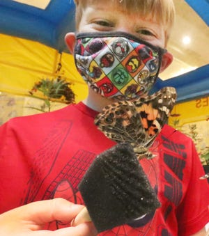Madden Weisman, 7,  holds a couple of painted lady butterflys on Friday, March 19, 2021 at the Spring Home Show at the Ocean Center in Daytona Beach.