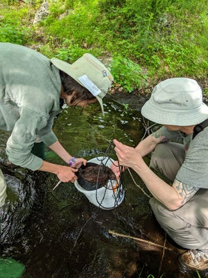 Tara Muenz is shown teaching Scouts of America how to retrieve their leaf pack in Hemlock Farms in 2019.