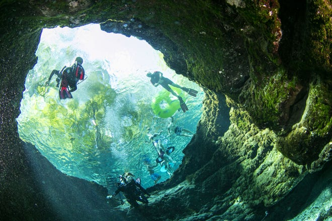 Swimmers and divers enjoy Devils Eye in Ginnie Springs park in High Springs in August 2016. The park was packed not only with divers but swimmers, snorkelers and tubers enjoying the hot summer day.
