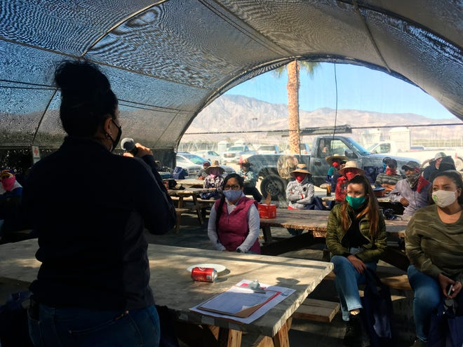 Luz Gallegos, left, executive director of TODEC Legal Center, holds a vaccine information workshop for agricultural workers on, March 18, 2021, in Thermal.