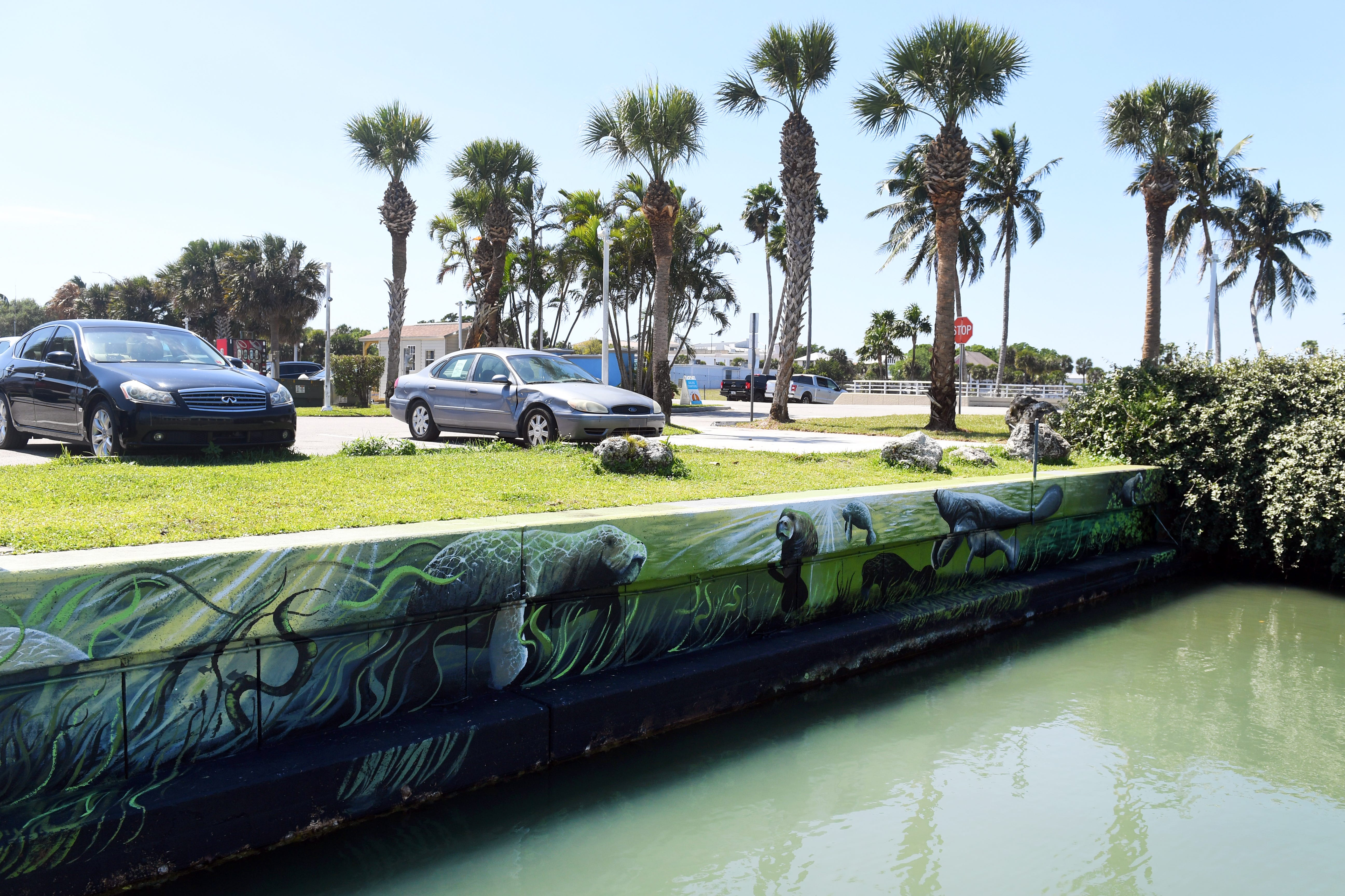 A new mural adorns the southern seawall of Moore's Creek across from the Manatee Observation and Education Center on Friday, March 19, 2021, in Fort Pierce, Fla. The mural, a collaboration between the City of Fort Pierce, the Treasure Coast Manatee Foundation and the Manatee Observation and Education Center, was created by Tallahassee-based artist Kenny Maguire.