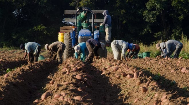 Bill will grant legal protections for 1 million farm workers who have worked in the U.S. illegally.