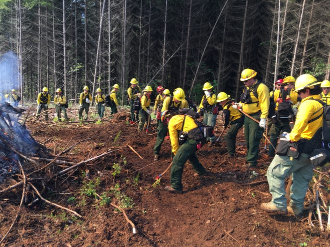 Lane County is accepting applications for its Firewise grants program, which will fund home improvements meant to reduce wildfire risk.