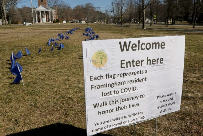 Two hundred and thirty-two blue flags flutter in the breeze on Framingham Centre Common, March 22, 2021. They were put there by Open Spirit, a multi-faith health and wellness center, in memory of those from Framingham lost to COVID-19.