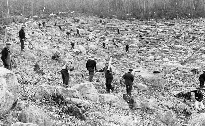 Workers clear scrub growth and trees in the early stages of Scituate Reservoir construction in 1921.