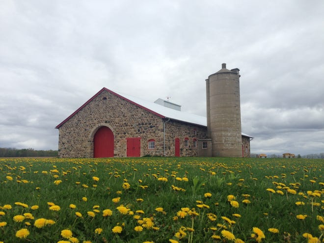 Built in 1903, Chase Stone Barn is on the National Register of Historic Places.