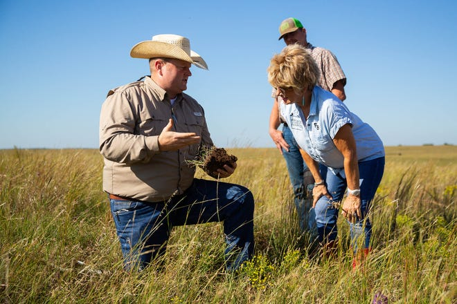 Regenerative agriculture builds healthy soil, which is the cornerstone of a healthy ecosystem and a productive farm or ranch.