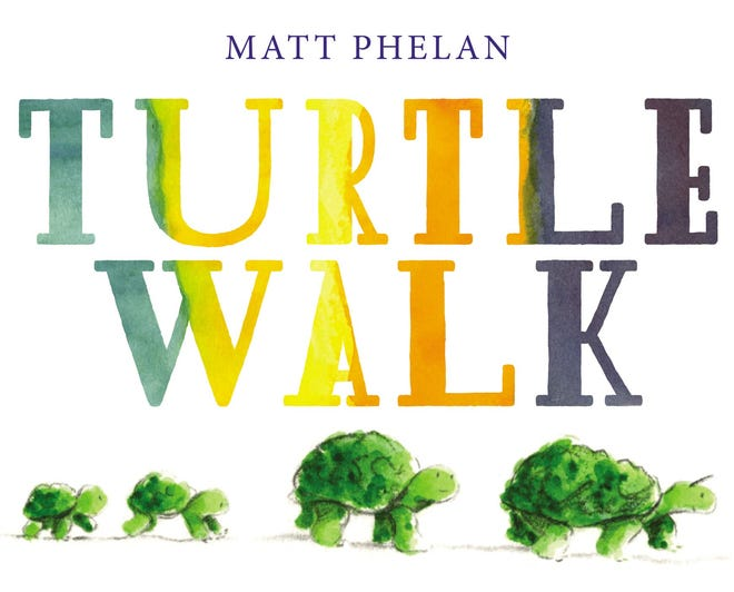 """Turtle Walk"""