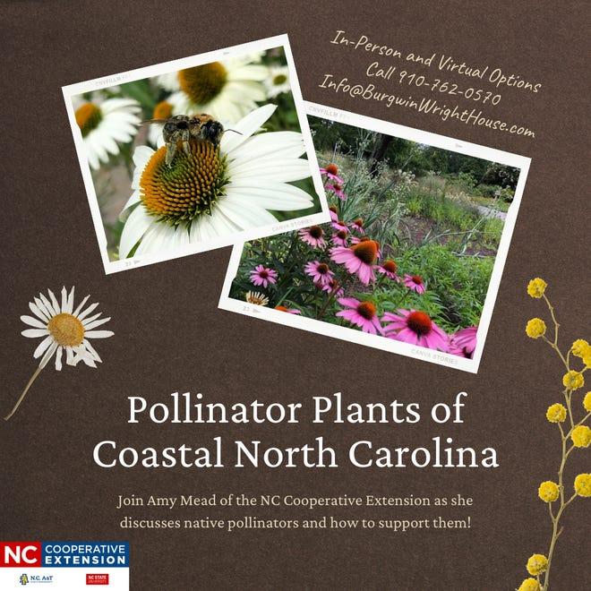 Pollinator plants of Coastal North Carolina.