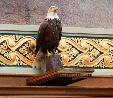 A replica of the bald eagle named Old Abe is shown during debate on Assembly Bill 24 at the state Capitol in Madison on Tuesday. Named after President Abraham Lincoln, the bald eagle was revered by 8th Wisconsin Volunteer Infantry soldiers who adopted the bird as their mascot, reviled by Confederate troops intent on killing the raptor and acclaimed by Wisconsinites after the war when Old Abe became a celebrity living at the state Capitol. Old Abe survived dozens of battles, only to die of smoke inhalation following a fire at the Capitol in 1881, and was stuffed and put on display in the statehouse rotunda several months later. President Theodore Roosevelt viewed the stuffed bird in 1903, one year before a fire razed the Capitol and destroyed Old Abe.