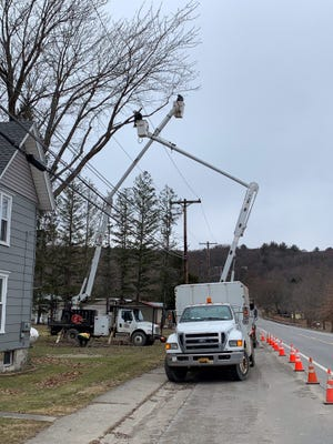 NYSEG recently began proactive tree trimming work in the town of Springwater and the surrounding area, including the towns of Wayland and Sparta and the village of Naples.