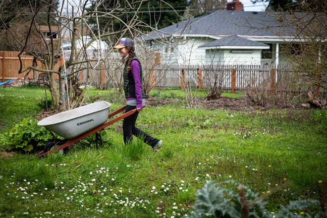 Dharmalaya resident student Sarah Hoffman brings a wheel barrow from the other side of the property. Hoffman lives in a tiny house, or small cabin, on the edge of the property with her cat Penelope. Penelope enjoys spending time with Hoffman in the garden.