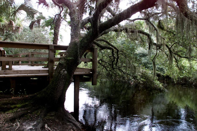 An observation deck sits along Myakkahatchee Creek in Myakkahatchee Creek Environmental Park, in this photo from 1999.