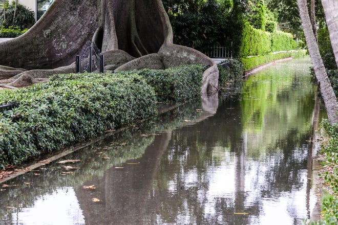King tides triggered flooding on the Lake Trail behind Royal Poinciana Chapel in October 2019.