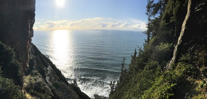 A viewpoint as seen from near the top of the Cape Sebastian cliffside trail.