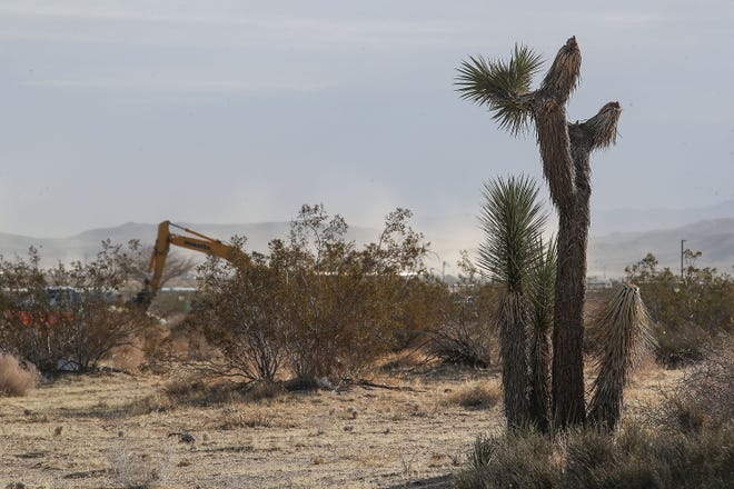 Dust from high winds and the construction of a new AutoCamp Airstream resort in Joshua Tree blows through the air, March 25, 2021.