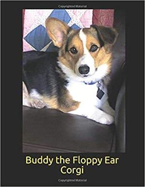 Buddy the Floppy Ear Corgi by Bill Tinsley