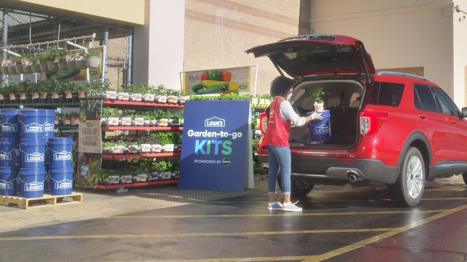Lowe's Earth Day freebie: Sign-up begins Thursday for April 22 free tree sapling giveaway