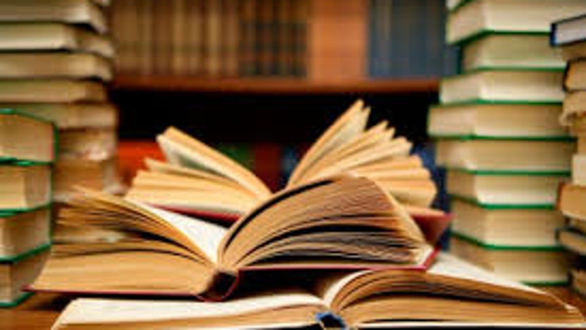 Education roundup: Several Stark students earn scholarships