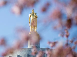 The Oregon Pioneer statue shines in the sun as the cherry blossom begin their bloom on the Capitol Mall.