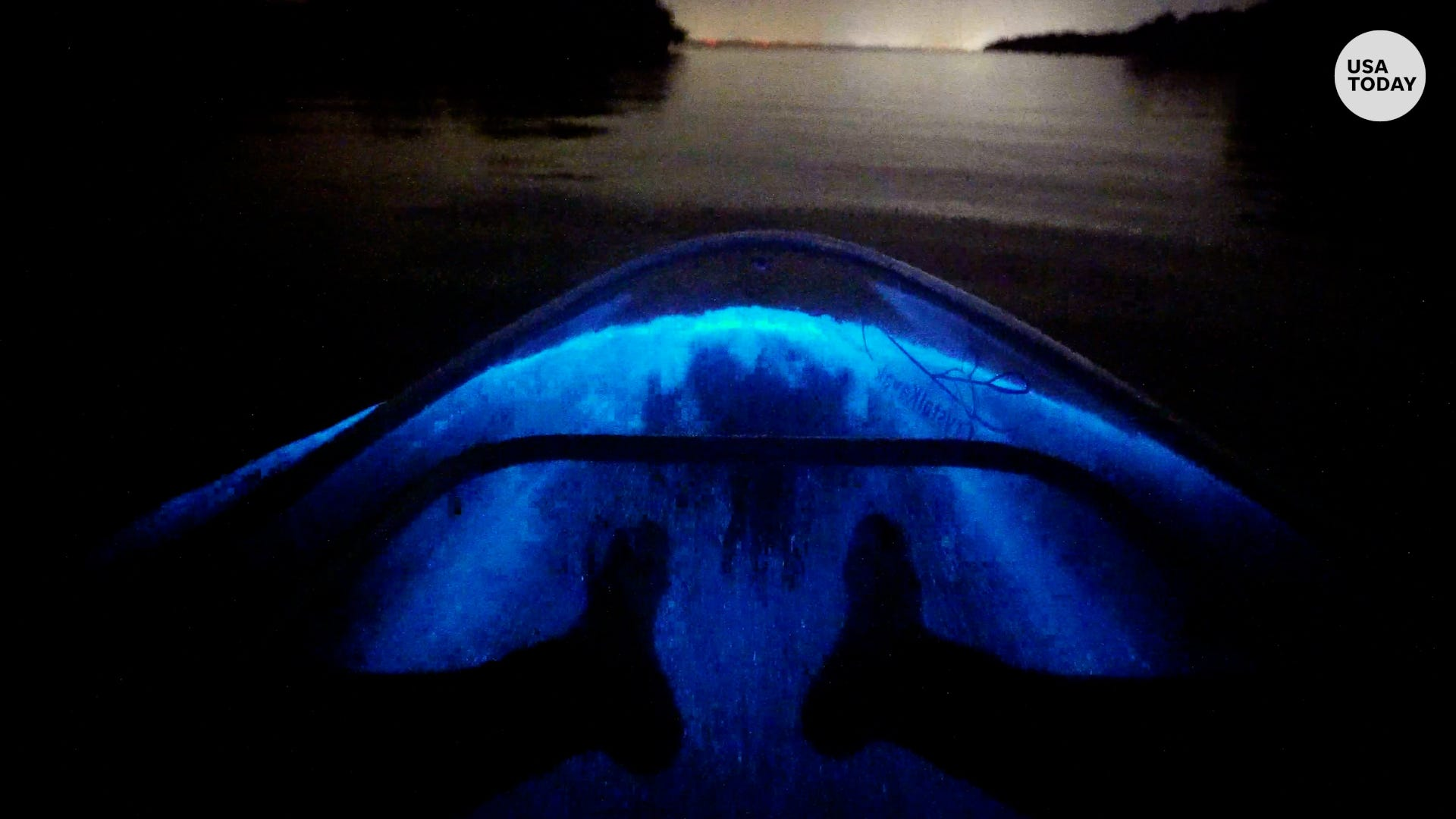 Dazzling bioluminescent kayak tour looks magical