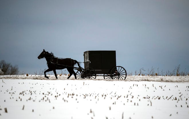 An Amish buggy travels through the snow on Feb. 2, 2021, in Earl Township, Pa. The administrator of a medical center in the heart of the Amish community in New Holland Borough estimates as many as 90% of Plain families have since had at least one family member infected with COVID-19, and that this religious enclave achieved what no other community in the United States has: herd immunity.  (Chris Knight/LNP/LancasterOnline via AP)