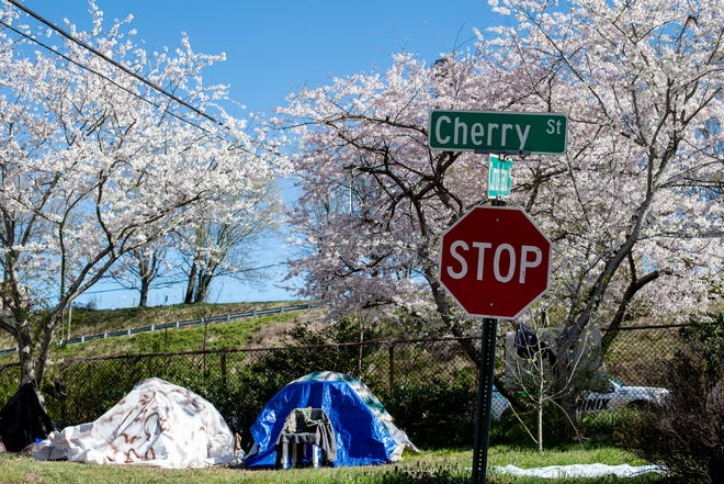 The city is working to remove the homeless encampment on Cherry Street in Asheville.