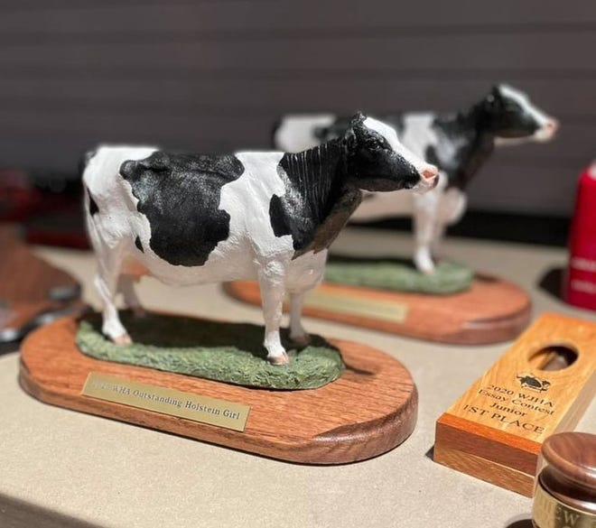 The Outstanding Holstein Boy and Girl award recognizes the effort and excellence put forth in their Holstein projects and contributions to the Wisconsin Junior Holstein Association.