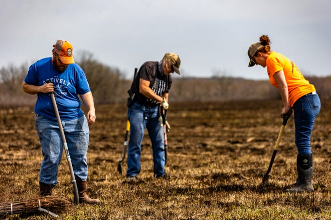 Clay Cooper, Don Wolfe and Elizabeth Elliott dig holes to plant Sand Plums saplings as part of a multi-year project to improve the habitat for quail near Copan Lake.