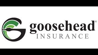 Goosehead Insurance is going to create 100 jobs in Columbus.