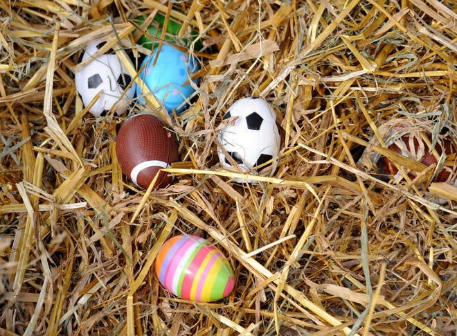 The Erie Zoo will host its annual Spring Egg-venture Hunt Saturday from 10 a.m. to 3:30 p.m.
