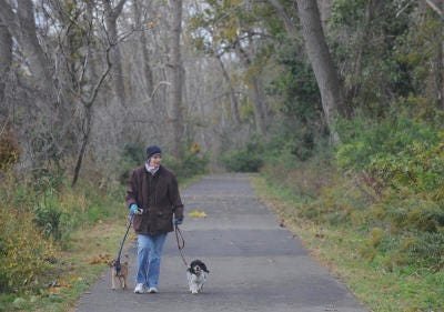 A Monroe woman walks with her dogs along the River Raisin Heritage Trail that runs along E. Elm Ave. in the City of Monroe and extends to Sterling State Park. The trail is where someone reported to the Monroe County Animal Control Office seeing a large tan cat weighing 45 pounds and having black stripes Saturday morning.