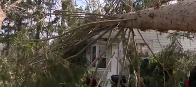 A tree fell onto a Janebar Circle  home in Framingham on Monday.