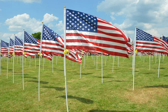 A Field of Honor will salute veterans with 500 flags on the Rochester Common over Memorial Day weekend.