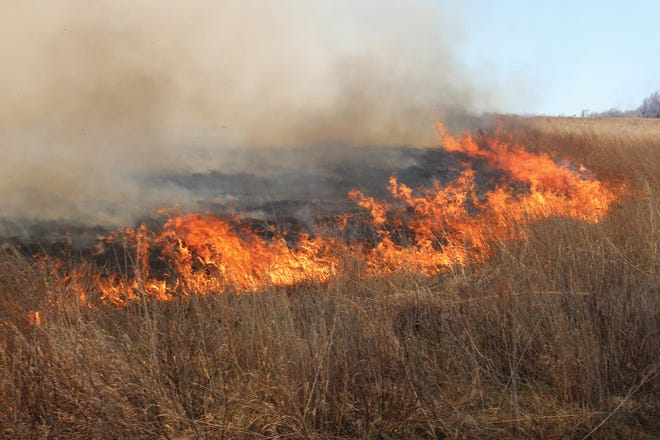 Grass fires like this one north of Iuka on Sunday, are part of spring land-management regulations. However, such fires are not permitted during unsafe weather and environmental conditions and must be authorized by 911 Dispatch Officers in all situations.