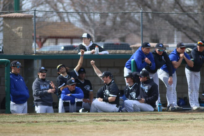 Dell Rapids native Carter Gullickson, second from left, cheers with his DWU teammates in a game vs. Briar Cliff in Sioux City on Sunday, March 28, 2021.