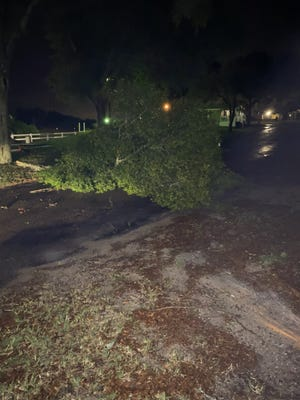 Wind gusts caused damage to trees, roofs and sidings on Tuesday night.